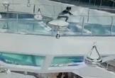 Đi tắt vì sợ muộn họp, nữ nhân viên rơi thẳng xuống bể cá mập