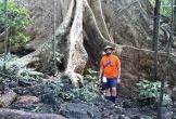 Khám phá rừng đêm ở Cát Tiên