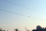 Vướng dây điện bị đứt rơi xuống đường, một người bị điện giật tử vong