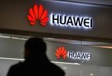 Kêu gọi tẩy chay Huawei nhận được phản hồi trái chiều ở châu Âu