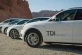 4 lãnh đạo Audi bị truy tố tại Mỹ