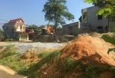Thạch Thành (Thanh Hóa): Chủ tịch UBND huyện chỉ đạo xử lý vụ việc bãi tập kết cát trái phép, gây ô nhiễm môi trường