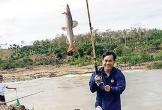 Thú săn cá ở thác hoang