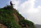 Dân tố nạn 'cát tặc' khiến đất bãi bị cuốn trôi ở Thanh Hóa