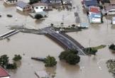 Hai người Việt Nam mất tích trong siêu bão Hagibis