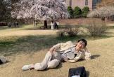 """Bí mật chưa kể về """"báu vật xứ Hàn"""" Sulli"""