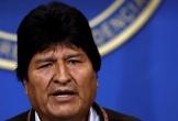 Tổng thống Bolivia từ chức trước sức ép biểu tình
