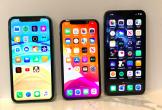 Apple sẽ ra mắt màn hình iPhone lớn nhất vào nằm 2020