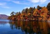 Mùa thu đẹp ngỡ ngàng ở Nhật Bản