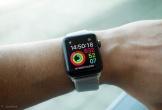 Gặp tai nạn lật thuyền trên biển, 2 người thoát chết hy hữu nhờ một nút bấm trên Apple Watch