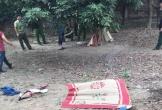 Bé trai 8 tuổi nghi bị bác rể sát hại, vứt xác ra đống gạch sau vườn