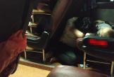 Hình ảnh mẹ nằm sàn xe canh giấc ngủ cho con, không rời nửa bước gây xúc động mạnh