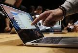 MacBook Pro 16 inch, iPad Pro sẽ sử dụng màn hình OLED từ Samsung