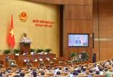 Chủ tịch nước Nguyễn Phú Trọng sẽ trình bày tờ trình gia nhập Công ước 98 trước QH