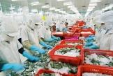 Xuất khẩu thuỷ sản mang về 9 tỷ USD, ngành tôm đóng góp tới 40%