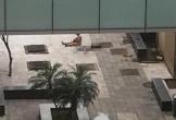 Nữ bệnh nhân nghi tự tử ở bệnh viện Bạch Mai