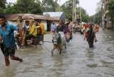 30 người chết, hàng trăm nghìn người phải sơ tán vì lũ lụt ở Bangladesh
