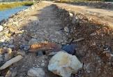 Mưa lớn làm lộ đất thải và đá cỡ lớn trên đường đê của dự án gần 7 tỷ đồng