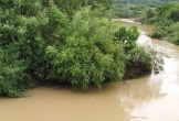 Thanh Hóa: Đi qua đập tràn khi nước lớn, 1 người bị cuốn trôi