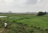 Thanh Hóa: Quy hoạch đô thị làm hơn 40 ha đất nông nghiệp của 730 hộ dân bị bỏ hoang nhiều vụ