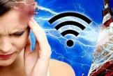 Bức xạ trên iPhone 7 khiến nhiều chuyên gia lo lắng