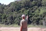 """Hàng trăm hộ dân """"mắc lầy trên cạn"""" ở Vườn Quốc gia Bến En"""