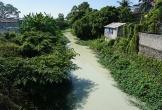 Nước thải từ chế tác đá bức tử kênh nhà Lê ở Thanh Hóa