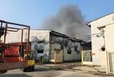 Hơn 2.000m2 nhà xưởng cháy rụi, đổ sập sáng 28 Tết
