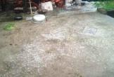 Mưa đá cực lớn xuất hiện tại Thanh Hoá, Phú Thọ