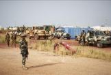 Một căn cứ quân sự ở Mali bị tấn công, 15 nhân viên an ninh thiệt mạng