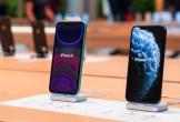 Giá iPhone 11 giảm mạnh