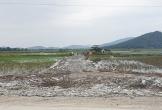 Thanh Hóa: Cần làm rõ việc Công ty Tân Thành 1 tự ý mở đường vào mỏ đá trên đất nông nghiệp?