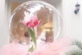 Hoa Valentine kèm chocolate tiền triệu