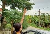 Thanh Hóa: Cần sớm khắc phục đường điện 35KV võng xuống thấp, đe dọa tính mạng người dân