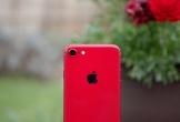iPhone 9 sẽ ra mắt vào ngày mai?