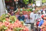 Khơi thông đường đi cho quả vải thiều Bắc Giang