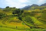 Tư vấn du lịch hè: Say lòng trước vẻ đẹp tựa cõi tiên ở Pù Luông