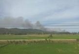 Thanh Hóa: Điều tra nguyên nhân dẫn tới vụ cháy rừng