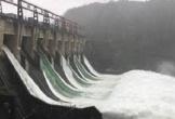 Cá 'khủng' đua nhau phóng khỏi đập thủy điện 61 năm mới xả lũ một lần