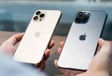 'iPhone 12 Pro Max sẽ là model bán chạy nhất dịp Tết'