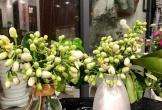 Đón rằm tháng Giêng, người Hà Nội lại tấp nập mua hoa bưởi