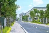 Thị trường bất động sản thích nghi với năm Covid thứ hai